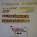 MONTESA COTA 311 DECALS KIT