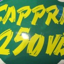 MONTESA CAPPRA 250 VB decal front number plate