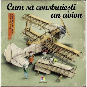 Cum să construiești un avion - Carte povesti pentru copii