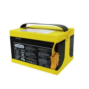Baterie Peg Perego 24V 12A