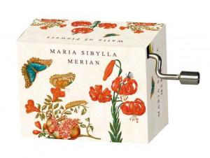Flasneta Maria Sibylla Merian (fluturi), Tchaikovsky Walts of flowers