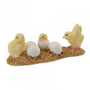 Puii din ou - Collecta