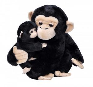 Mama si Puiul - Cimpanzeu