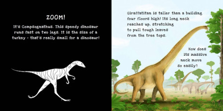 Dinosaurs: A shine-a-light book