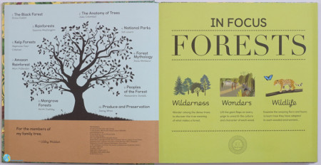 In Focus - Forests