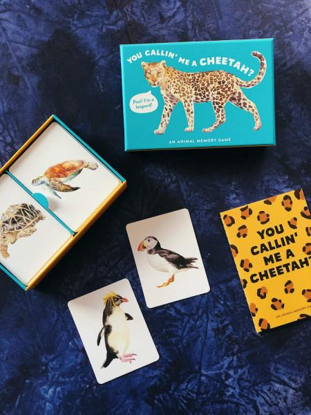 You Callin' Me a Cheetah? (Pss! I'm a Leopard!): An Animal Memory Game