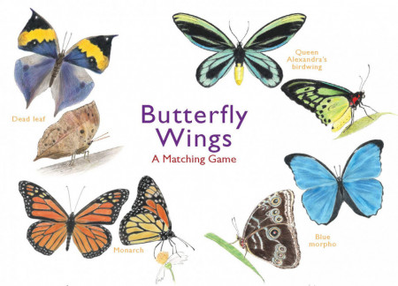 Butterfly Wings - A Matching Game
