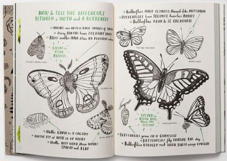 Hello Nature - Draw, Colour, Make and Grow