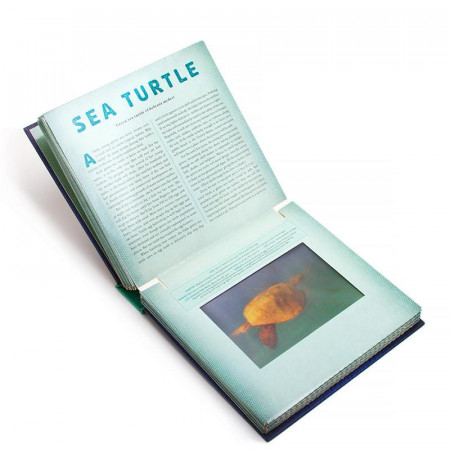Ocean. A Photicular Book