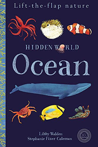 Hidden World: Ocean (Lift-the-flap Nature)