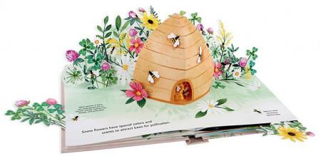 Flora: A Botanical Pop-up Book
