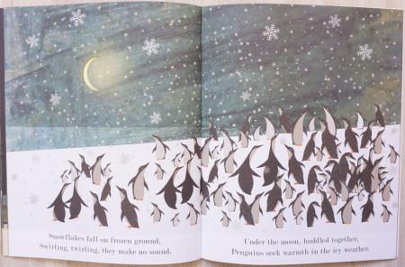 Moon (paperback)
