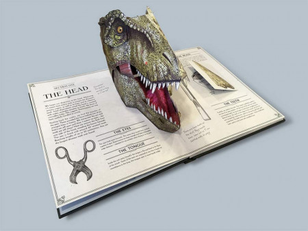 Tyrannosaurus Rex: A Pop-Up Guide to Anatomy