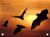 All About Bats: Explore the World of Bats! (DK Readers Level 1)