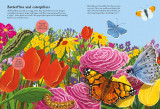 National Trust: Beetles, Butterflies and other British Minibeasts (National Trust Sticker Spotter Books)
