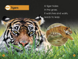 Jungle Animals: Discover the Secrets of the Jungle! (DK Readers Level 1)