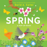 Spring: A Seasons Pop-up