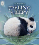 Feeling Sleepy - Drift Off to Sleep With Your Animal Friends