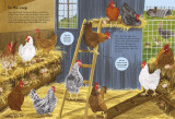 National Trust: Horses, Hens and Other British Farm Animals (National Trust Sticker Spotter Books)
