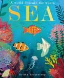 Sea - A World Beneath the Waves (board book)