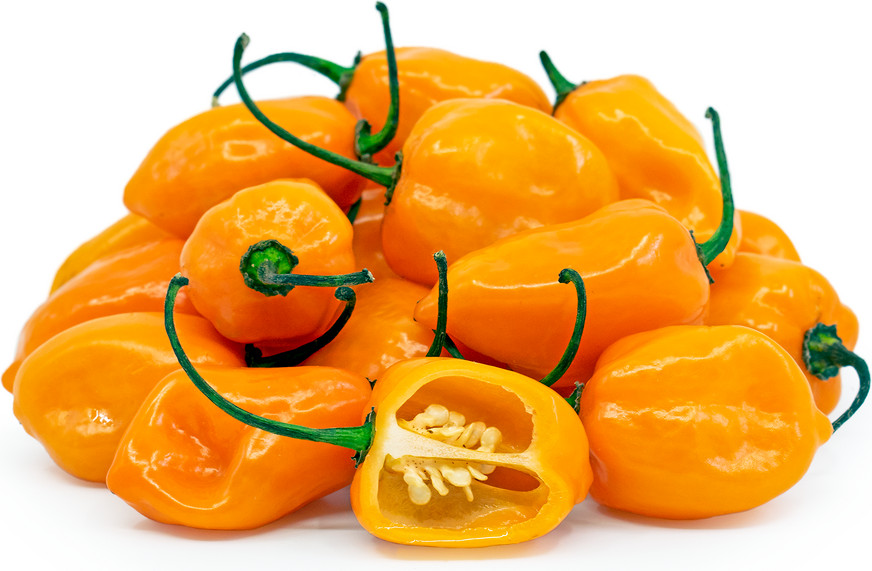 Habanero portocaliu Orange (20 seminte), ardei iute tip chili, Florian