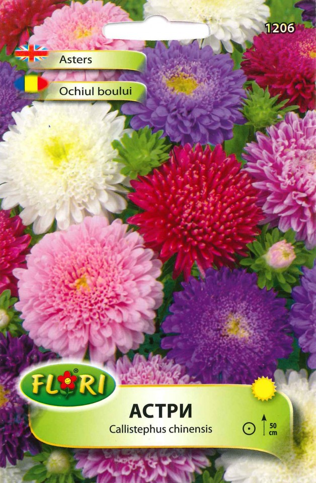 Ochiul Boului Mix Seminte Flori Ochiul Boului De La Florian