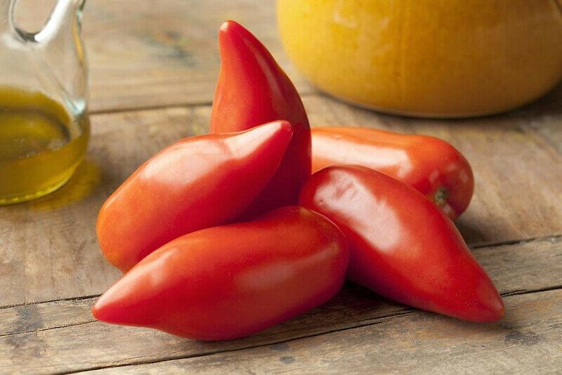 Piramide (150 seminte) tomate lungi soi determinat semitimpuriu in forma de ardei, Agrosem