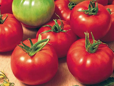 Amati F1 (20 seminte) de rosii crestere nedeterminata, timpurii, Seminis