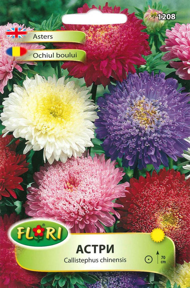 Ochiul Boului Printesa Mix Seminte Flori Ochiul Boului De La Florian