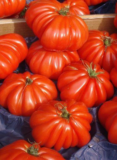 Marmand (300 seminte) de tomate crete soi nedeterminat, Florian