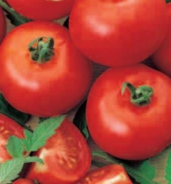 Tomate Buzau 4 (12.500 seminte) seminte de rosii Agrosem