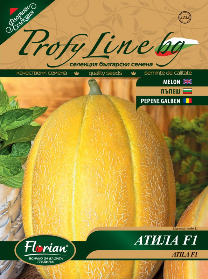 Atila F1 (25 seminte) pepene galben bulgaresc feliat, semi-timpuriu, pulpa crocanta, fruct 3 - 4 kg, Florian