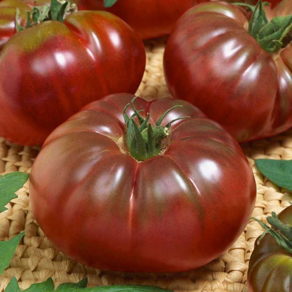 Tomate Russian Black (0.2 grame) seminte tomate negre cu pulpa groasa, gust placut, Agrosem