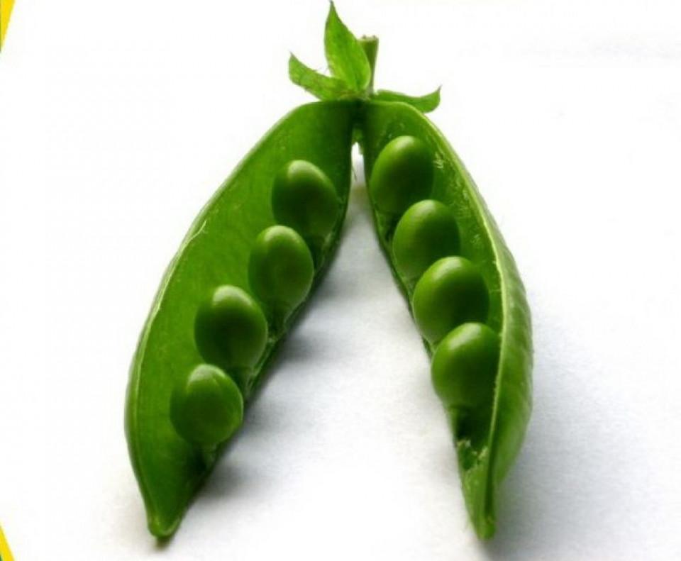 Zsuzi (150 gr) seminte de mazare de gradina, soi tardiv, Agrosem