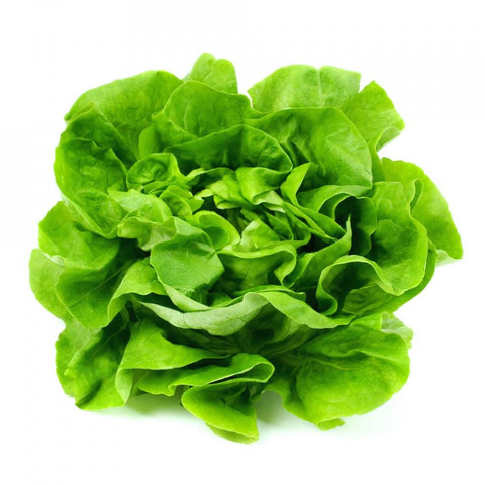 Gratia seminte de salata (5 gr) soi romanesc, SCDL Buzau
