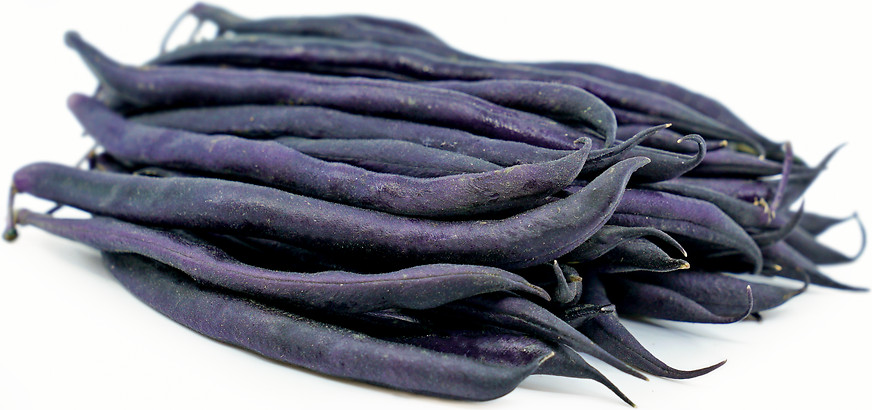 Purple Queen (25 kg) Seminte de Fasole pitica mov Purple Queen Soi Productiv Timpuriu, Agrosem