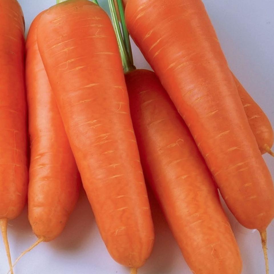 Kuroda (5 gr) seminte de morcovi de culoare portocaliu inchis, Agrosem
