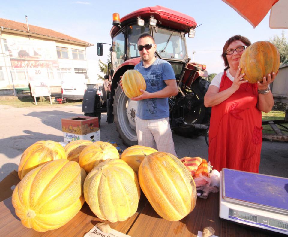 Lider F1 (500 seminte) pepene galben foarte mare, bulgaresc