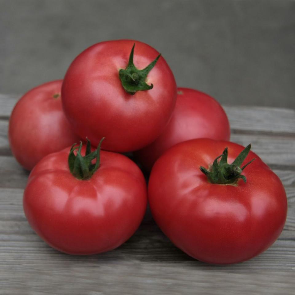 Zersy F1 (10 seminte) de tomate roz nedeterminate , Kitano Seeds