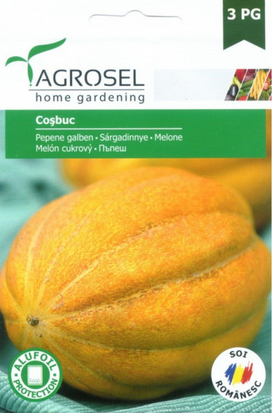 Cosbuc Seminte Pepene galben (2 gr), tip Cantaloup rotund oval, Agrosel