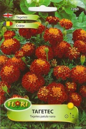 Craite BATUTE - Seminte Flori Craite Batute de la Florian