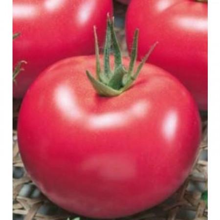 Lillagro (1.5 gr) seminte rosii romanesti cu crestere nedeterminata , Agrosel