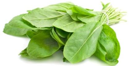 Macris Medicinal - Seminte de Macris Planta Aromatica si Medicinala de la Florian