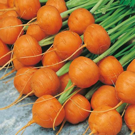 Mercado de Paris (3 gr) seminte morcov rotund extratimpuriu, Agrosem