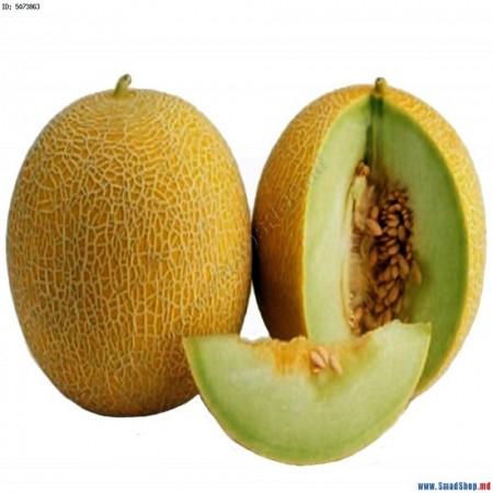 Sembol F1 - 500 sem - Seminte de pepene galben de tip Galia cu fructe uniforme ca marime si forma fiind usor de cultivat (spatii protejate si in camp) avand o culoare galben-portocaliu atractiv de la Enza Zaden