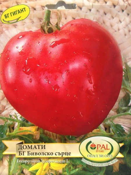 Inima de Bivol Rosu Gigant (300 seminte) rosii mari soi Gigant bulgaresc, Opal