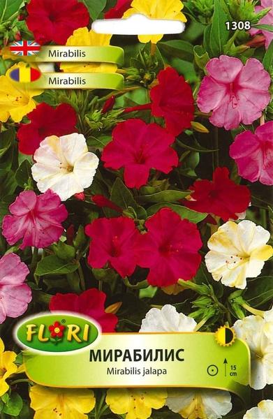 Mirabilis Mix - Seminte Flori Mirabilis Mix de la Florian