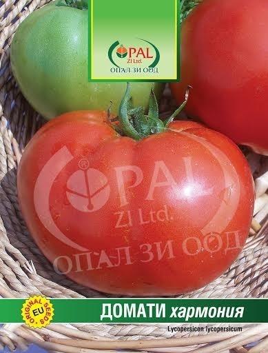 Rosii Harmonia - 1 gr - Seminte Tomate Mari Bulgaresti pentru cultura a doua, Opal