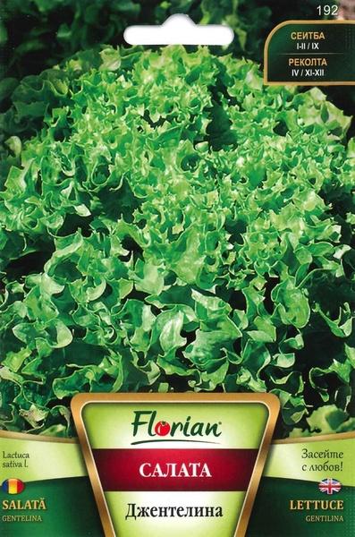 Salata creata GENTELINA - 3 gr - Seminte Salata Creata Soi Timpuriu de la Florian