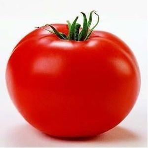 Seminte tomate Tamaris F1 (1000 seminte), crestere nedeterminata semitimpuriu, Clause
